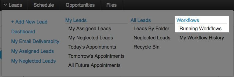 leads-menu-running-workflows
